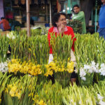 Day of the Dead at Mercado Jamaica — Seasonal Only