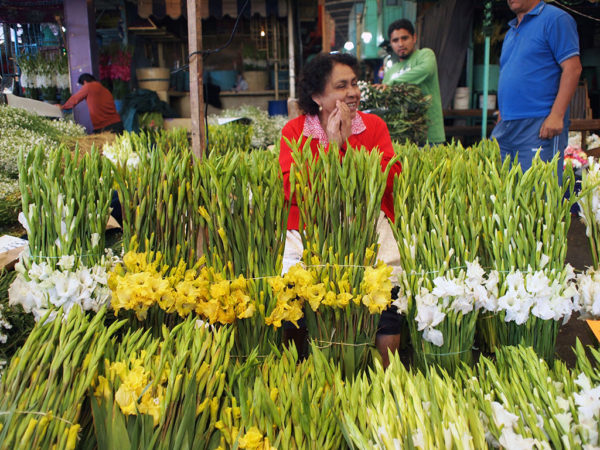 A flower venor in Mexico City's Mercado Jamaica. Photo by Yigal Schleifer