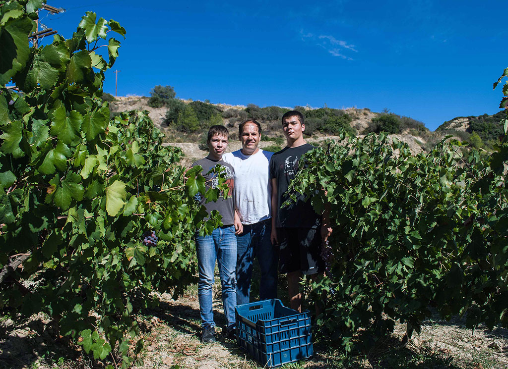 John Papargyriou with sons Dimitris and Alexandros in their vineyard. Photo by Angelos Damoulianos