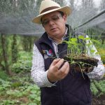 Ancient Agriculture in Mexico City