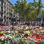 Barcelona's Healing Outdoors
