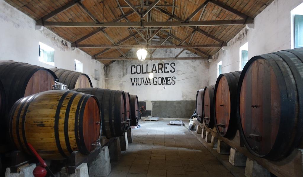 colares wine