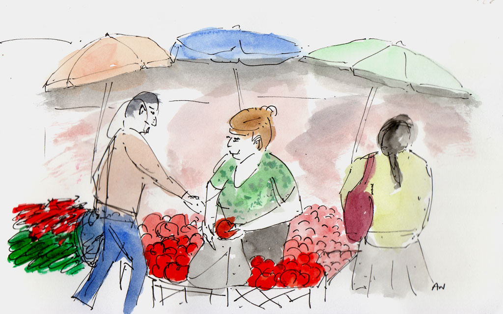 Nona's tomato stall at the Deserterebi bazaar, illustration by Andrew North